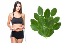 Are you aware of the values of curry leaves
